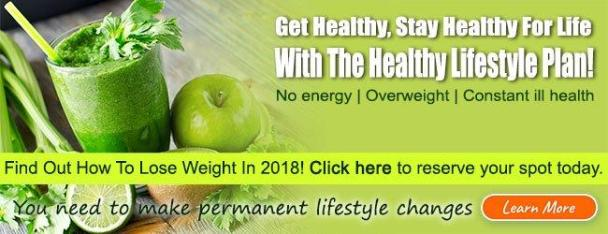 Healthy Lifestyle Plan