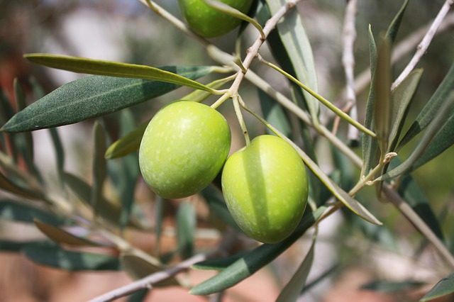 Olive Oil: 2mg per Tablespoon