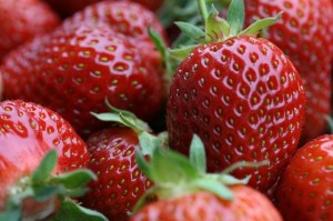 strawberries-776985_640