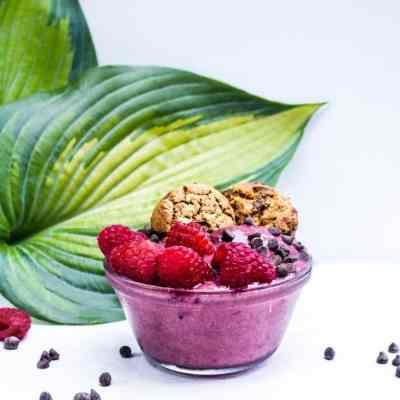 chocolate raspberry protein nice cream