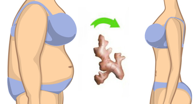 HOW TO LOSE WEIGHT AND BELLY FAT WITH GINGER! UNBELIEVABLE!