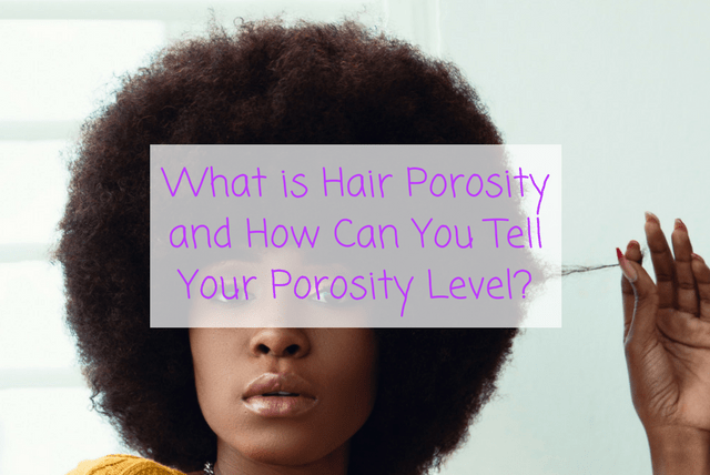 What is Hair Porosity and How Can You Tell Your Porosity Level