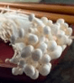 pic-enoki-mushrooms