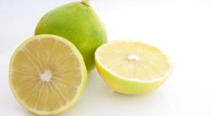 Whole and Sliced Bergamot