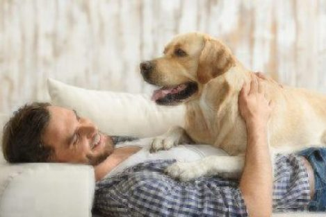 Best Dogs For Apartments