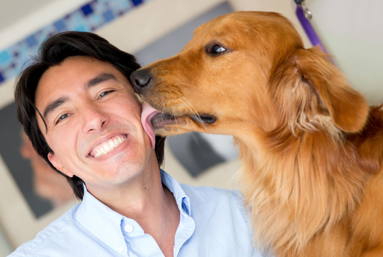 Best Pet Insurance Dogs