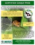 coqui free flyer