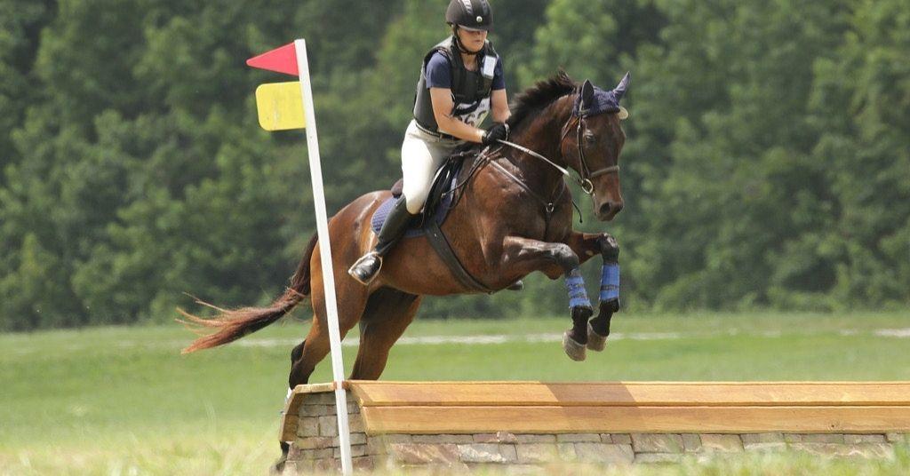 deaf equestrian