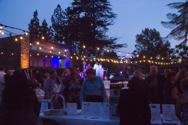 CAC Event 2014 - crowd and silent auction items