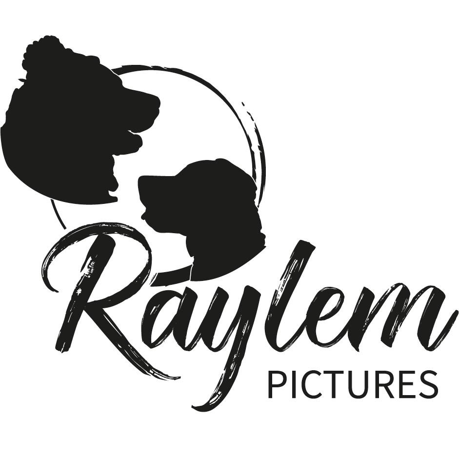 Raylem Pictures