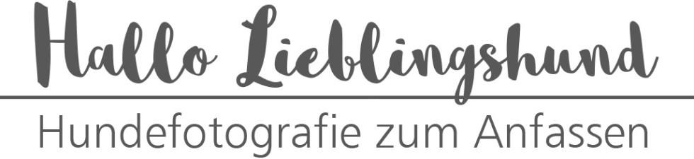 02-Hallo-Lieblingshund
