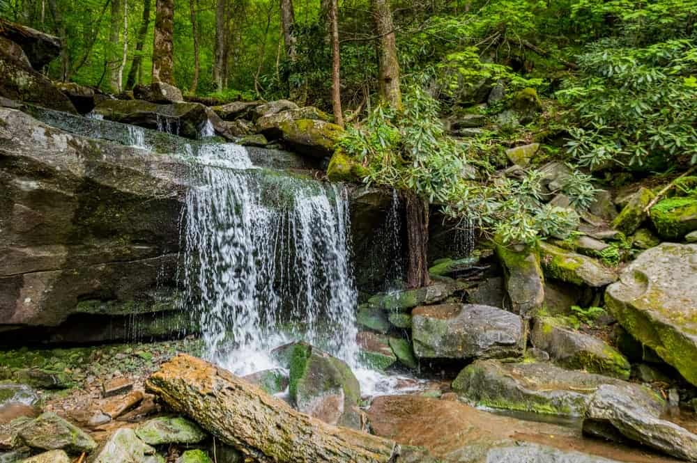 Cammerer trail / appalachian trail / low gap trailhead: 7 Breathtaking Waterfalls Near Gatlinburg