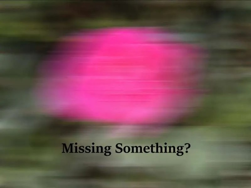 Missing Something? Picture is blurred by fast motion.