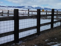 Wooden post and wire mesh corral fence.