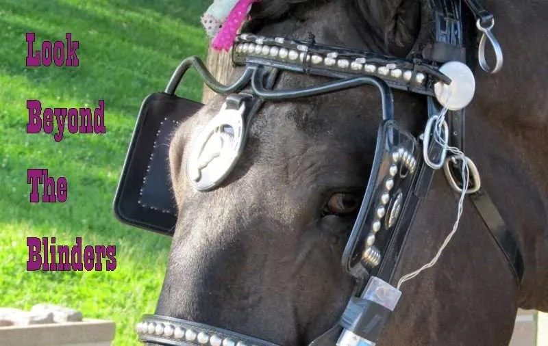 Horses eyes with blinders on with the title Look Beyond the Blinders