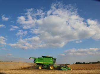 Crop Illinois