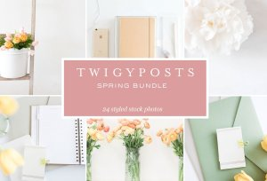 Spring Bundle images for blog post by Twigy Posts