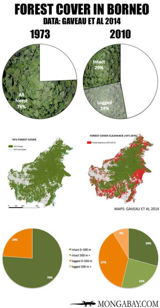 CHART-FOREST-COVER-IN-BORNEO-550-MONGABAY-Mar2015