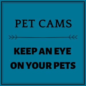Pet Cams