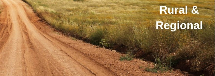 rural and regional - a dusty dirt road stretches into the horizon next to a paddock of tall grass.