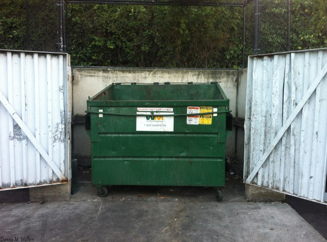 Keeping Dumpster Areas Clean From Trash On The Ground Will Help Keep Rodents Getting Into