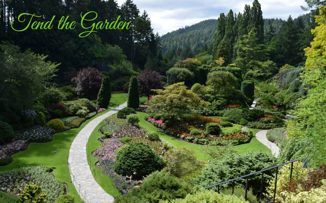 Tend the Garden, a Divine Purpose