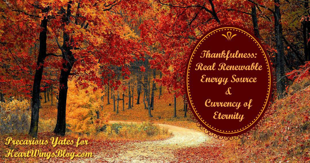 Thankfulness: Renewable Energy Source & Currency of Eternity