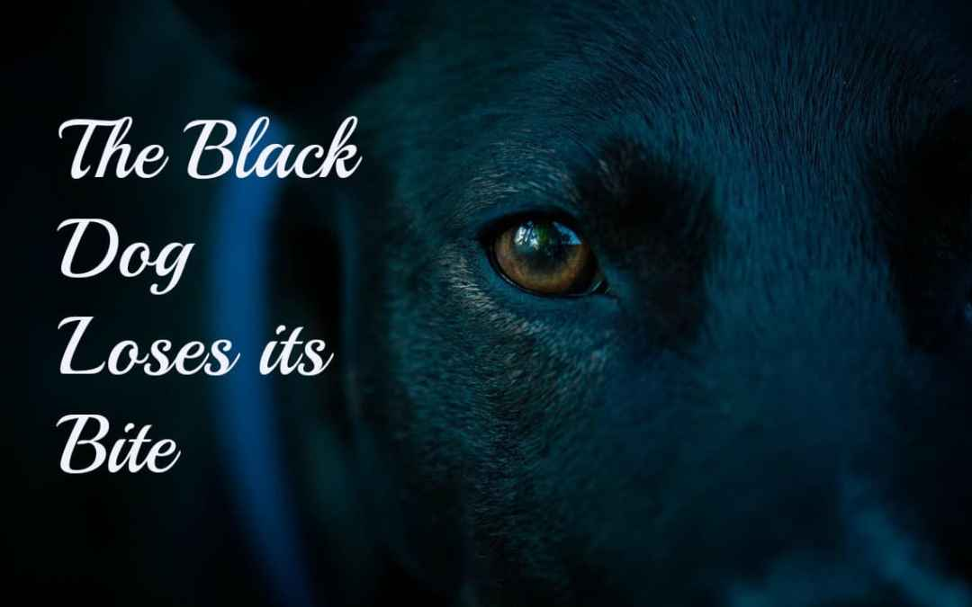 The Black Dog Loses its Bite