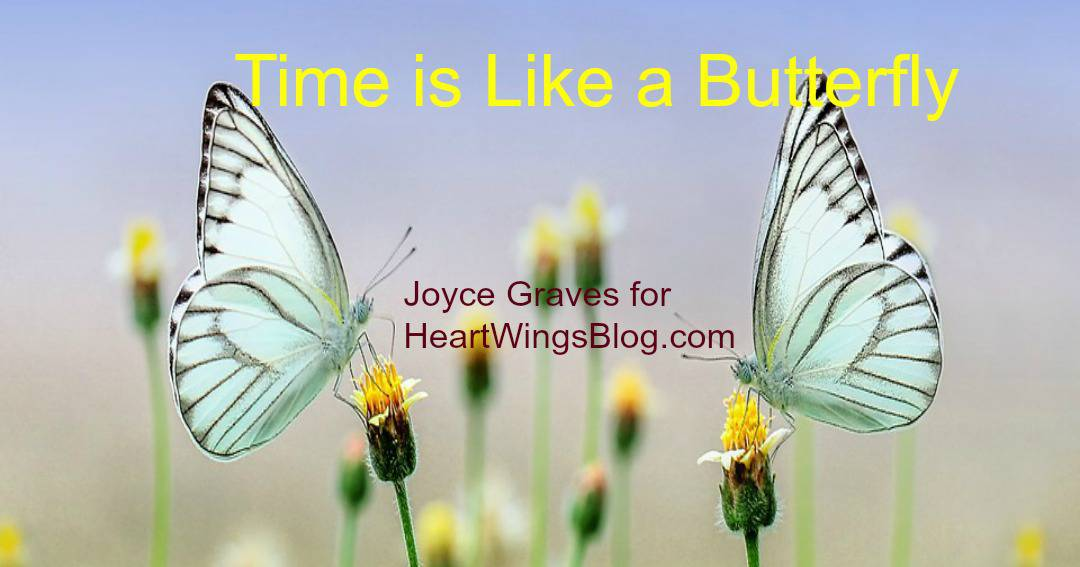 Time is Like a Butterfly