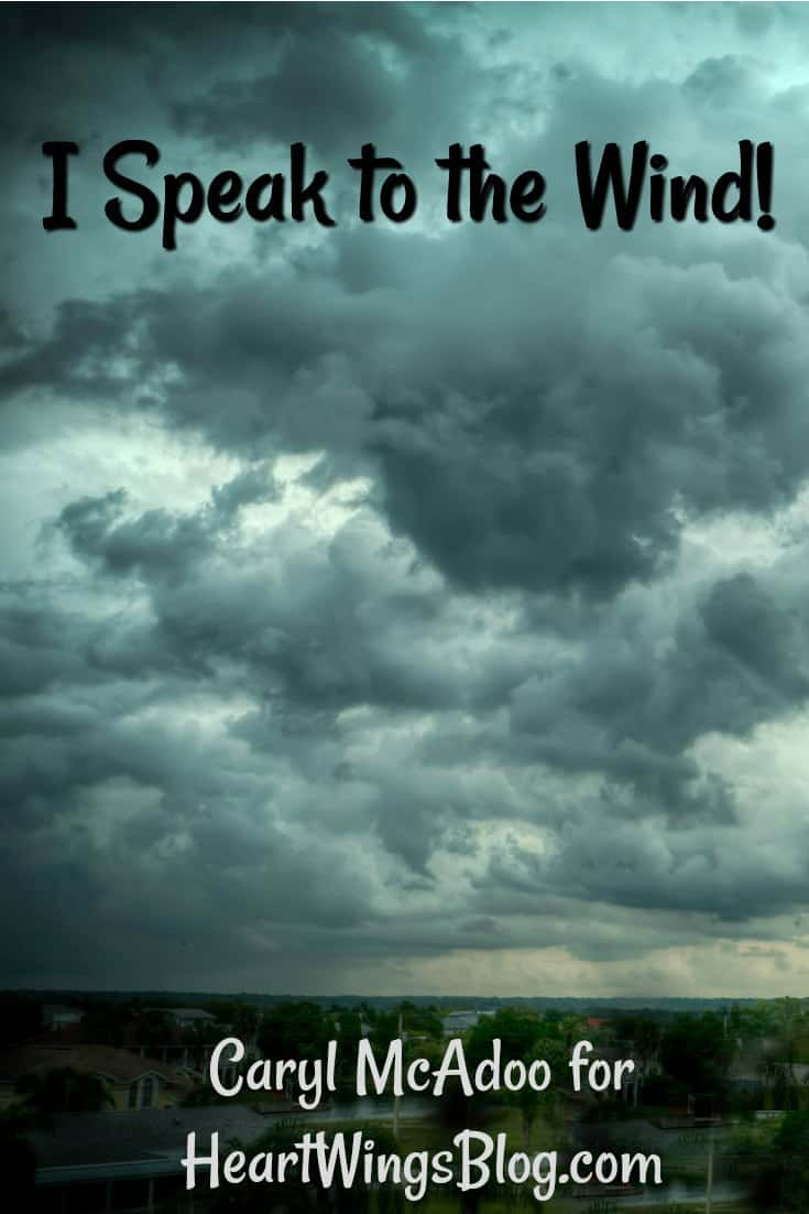He is the Word and the Music, the Song that I sing! Caryll McAdoo remembers a time when she spoke to the wind at HeartWings Blog!