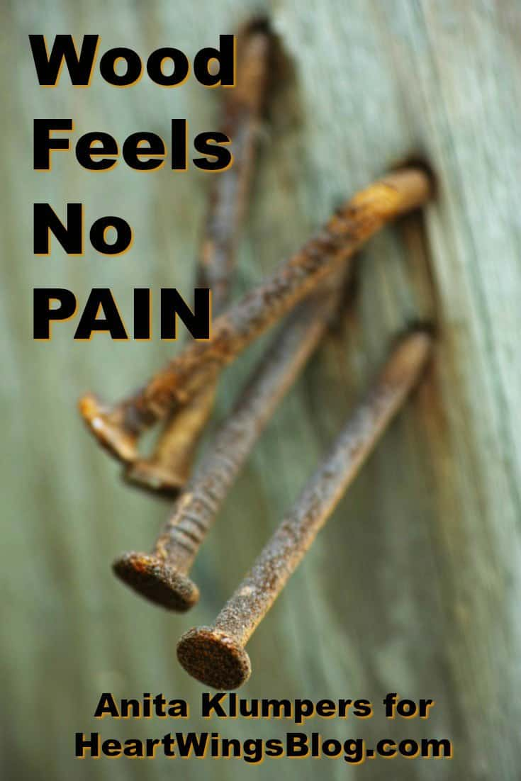 AT HeartWings Blog, Anita Klumpers tells the tale that Wood Feels no Pain. Don't miss this poignant post.