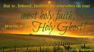 Jude 1:20 Build faith! Pray in the Spirit!