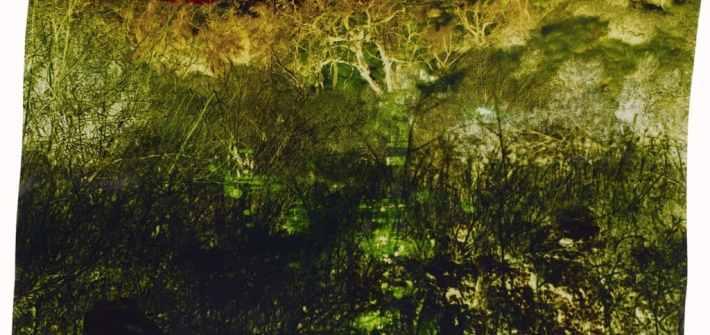 """Sierra at Edison"" (2012 , chromogenic photograph on Kodak Professional Endura Metallic paper) © John Chiara 2014.8.4 (Credit: The J. Paul Getty Museum/John Chiara)"