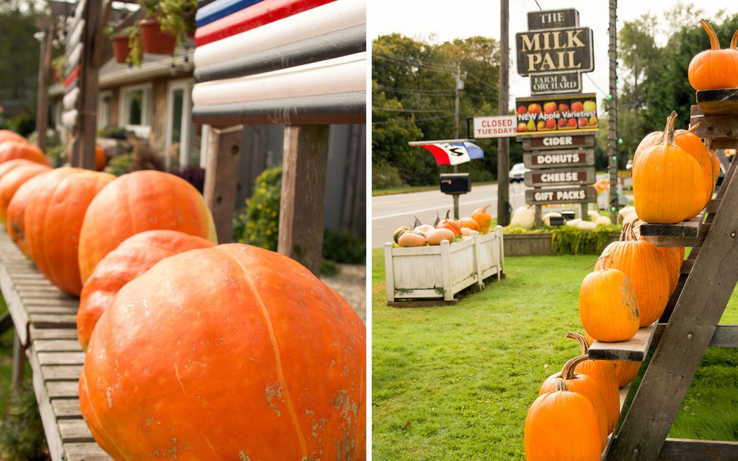 fall in the hamptons - the milk pail