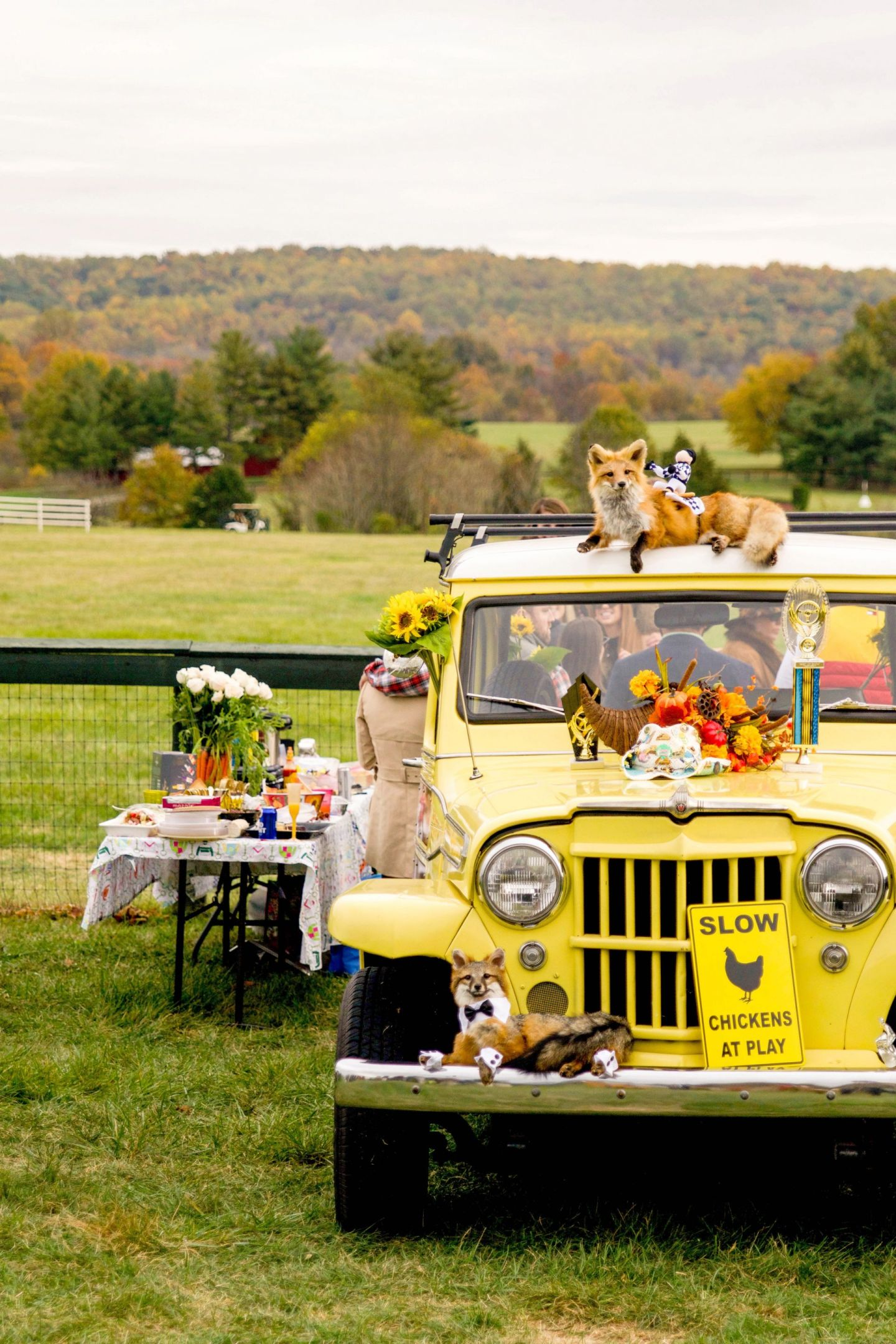 virginia gold cup races - fall gold cup - is fall gold cup fun - fall gold cup tailgate - fall tailgate inspiration
