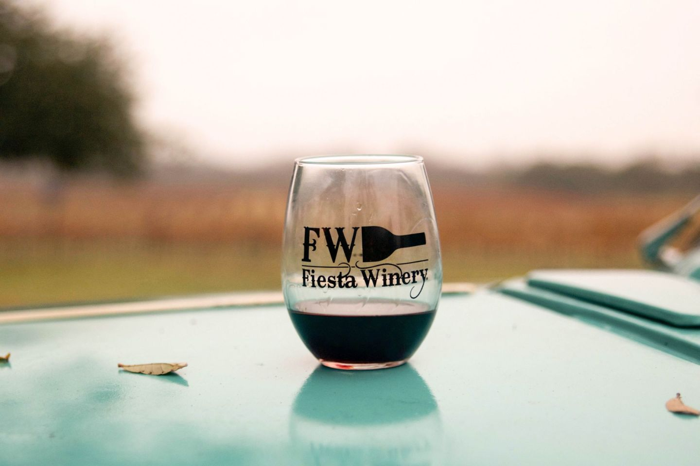 texas wineries - hill country vineyards - fiesta winery texas