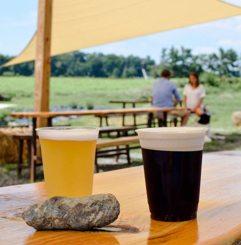 Day Trip Out of DC: Wheatland Spring Farm + Brewery
