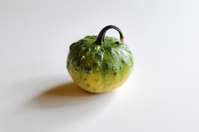 #LiveBoldly Day 22: Exploring Those Water Diamonds (and a gourd picture I really love!) || HeathersDish.com #31days