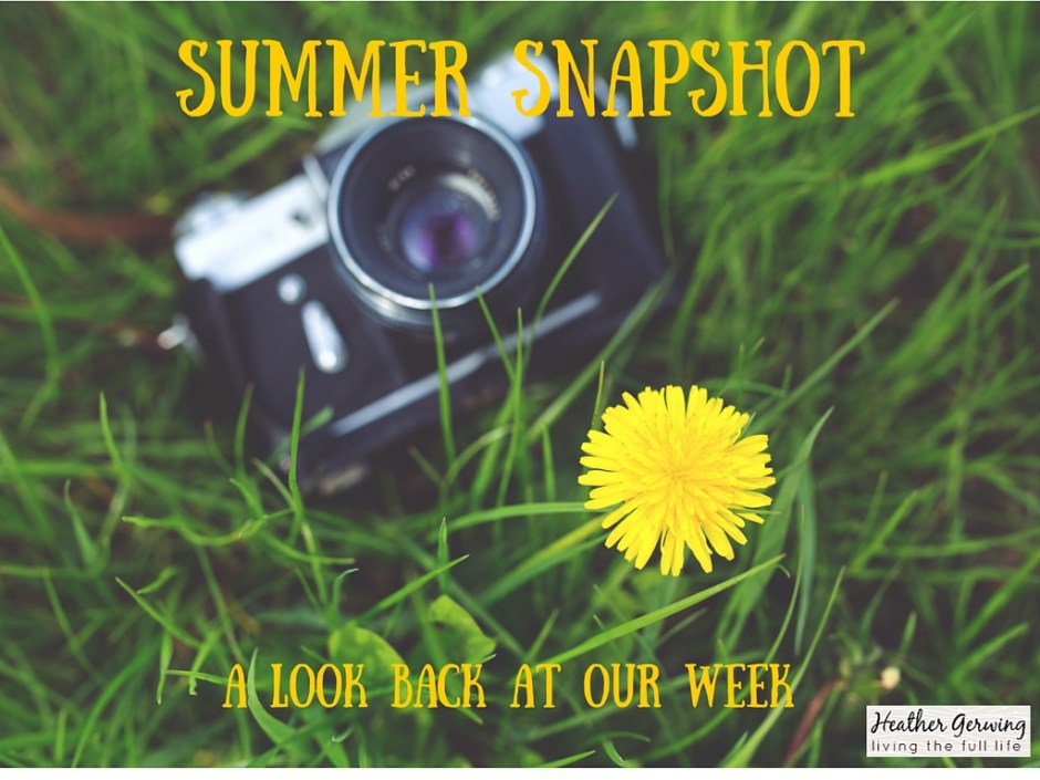 Summer Snapshot #9