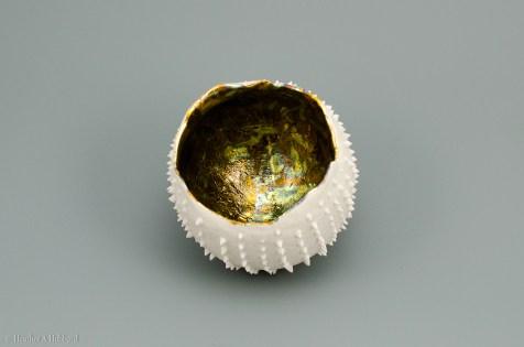 Small Porcelain Pod, 2017