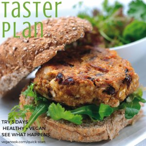 3-day vegan taster meal plan