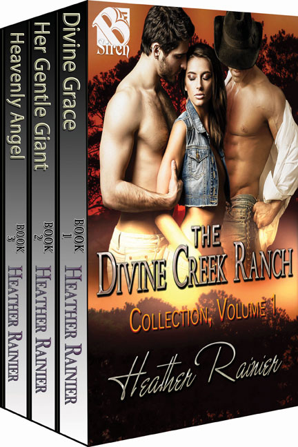 Book Cover: The Divine Creek Ranch Collection Boxed Set