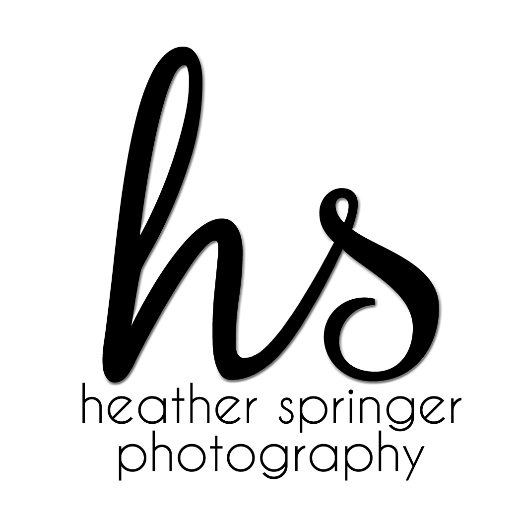 About Heather Springer Photography