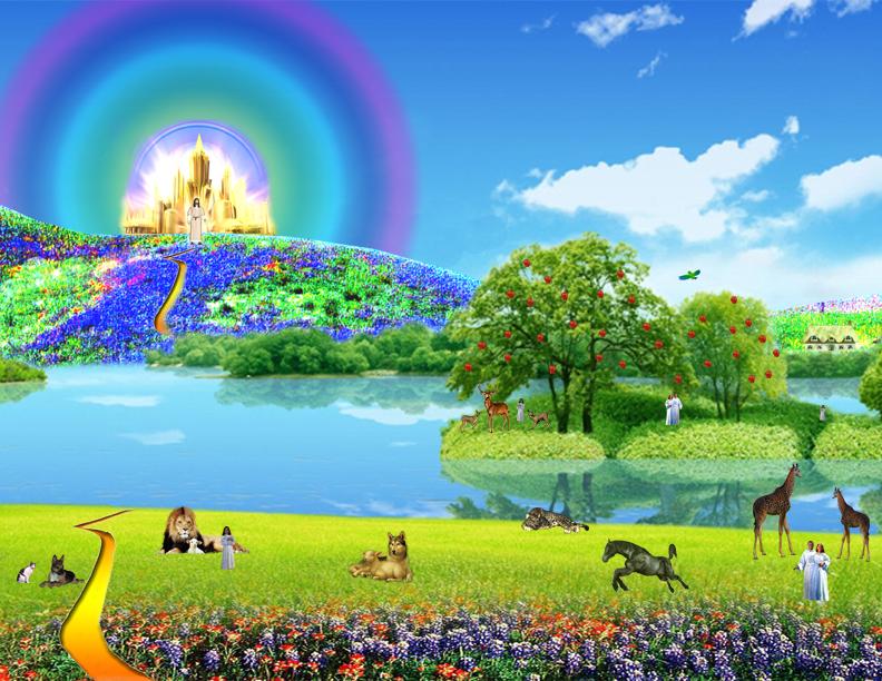 Nos animaux de compagnie vont-ils au ciel ? - Page 16 Heavenweb