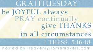 Check out Lauras blog for more Gratituesday posts!