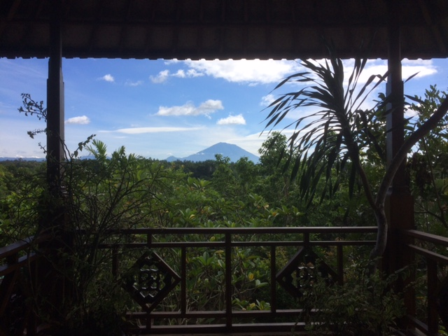 Healthy Bali Guide (Part 3) - Ubud and the spiritual jungle of Bali - heavenlynnhealthy.com