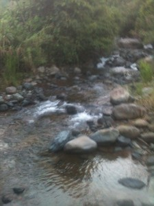 Fuzzy picture of the river :)