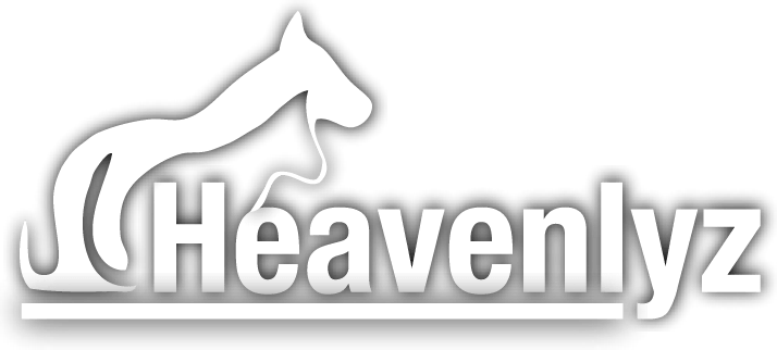 Heavenlyz Logo