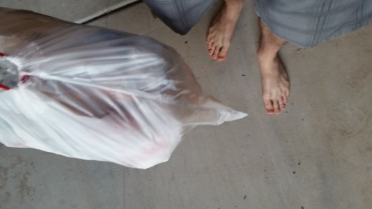 Barefoot and shorts to take out the trash!