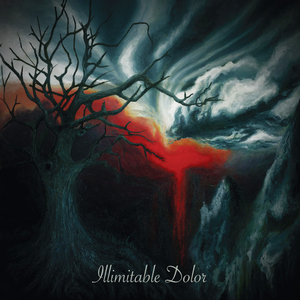 Illimitable Dolor - Illimitable Dolor